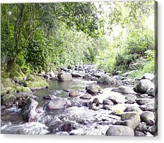 River In Adjuntas Acrylic Print