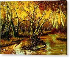 River In The Forest Acrylic Print by Henryk Gorecki