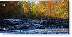 River Acrylic Print by Jerry LoFaro