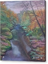 River In The Fall Acrylic Print