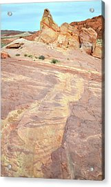 Acrylic Print featuring the photograph River Of Color In Valley Of Fire by Ray Mathis