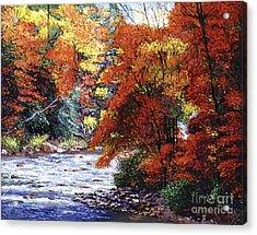 River Of Colors Acrylic Print by David Lloyd Glover