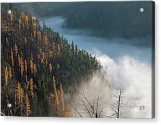 River Of Mist Acrylic Print