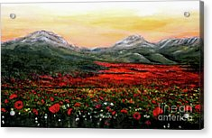 River Of Poppies Acrylic Print by Judy Kirouac
