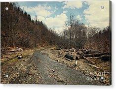 River On The Road Acrylic Print by Mykola Romanovsky