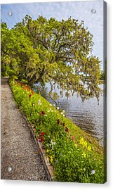 Acrylic Print featuring the photograph River Path 1 by Steven Ainsworth