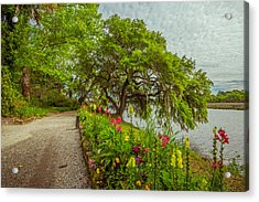 Acrylic Print featuring the photograph River Path II by Steven Ainsworth