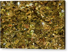 River Pebbles Acrylic Print