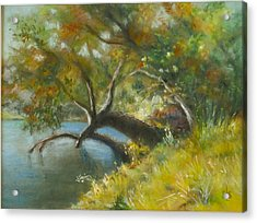 River Reverie Acrylic Print