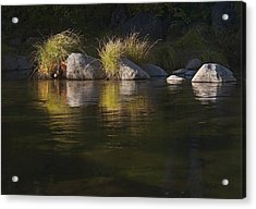 Acrylic Print featuring the photograph River Rocks And Grass by Larry Darnell