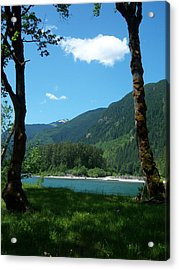River Shade Acrylic Print by Ken Day