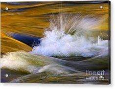River Acrylic Print by Silke Magino