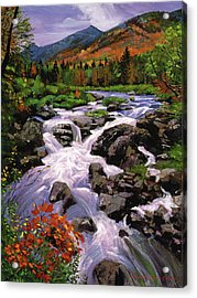 River Sounds Acrylic Print by David Lloyd Glover
