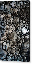River Stone 14 Acrylic Print
