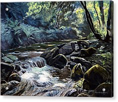 River Taw Sticklepath Acrylic Print