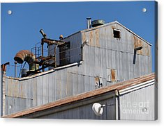 River Town Feed And Pet Country Store In Petaluma California Usa Dsc3842 Acrylic Print by Wingsdomain Art and Photography