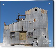 River Town Feed And Pet Country Store In Petaluma California Usa Dsc3854 Acrylic Print by Wingsdomain Art and Photography
