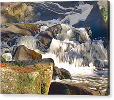Acrylic Print featuring the photograph River Wild by Raymond Earley