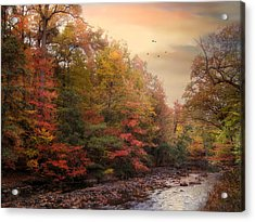 Riverbank Beauty Acrylic Print by Jessica Jenney