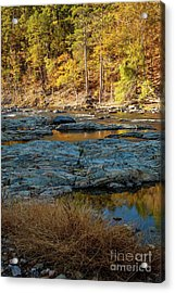 Acrylic Print featuring the photograph Riverside by Iris Greenwell