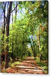 Acrylic Print featuring the photograph Riverway Trail - Bisset Park - Radford Virginia by Kerri Farley