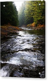 Acrylic Print featuring the photograph Rivulet by Votus