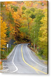 Road And The Fall 2 Acrylic Print by Lanjee Chee