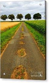 Road In Rural France Acrylic Print by Elena Elisseeva