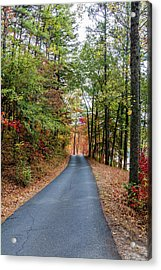 Road In The Woods Acrylic Print