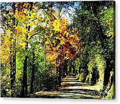 Acrylic Print featuring the photograph Road Into Autumn by Terri Thompson
