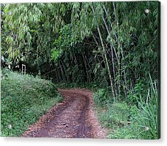 Road Into Bamboo Forest Acrylic Print by Jack Herrington