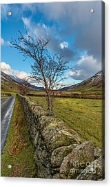 Road Less Travelled Acrylic Print by Adrian Evans