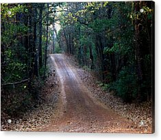 Acrylic Print featuring the photograph Road Not Taken by Betty Northcutt