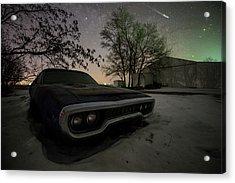 Road Runner  Acrylic Print