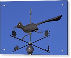 Acrylic Print featuring the photograph Road Runner Weather Vane by Joan Hartenstein