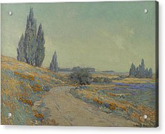 Road Through A Field Of Wildflowers Acrylic Print by Granville Redmond