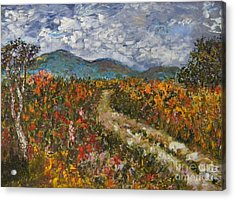 Road Through Colored Meadows Acrylic Print by Emily Michaud