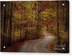 Road Through Tishomingo State Park Acrylic Print