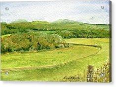 Road Through Vermont Field Acrylic Print