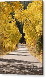 Road To Autumn Acrylic Print by Dennis Hammer