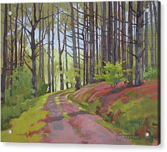 Road To Doc's Cabin Acrylic Print by Todd Baxter