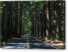 Road To Mendocino Acrylic Print