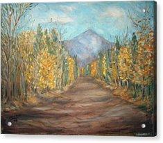 Road To Mountain Acrylic Print by Joseph Sandora Jr