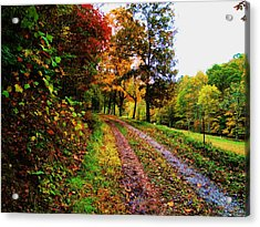 Road To My Farm Acrylic Print by Terry  Wiley