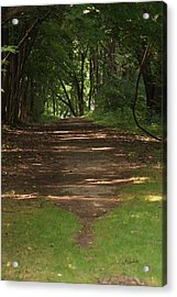 Road To Nowhere Acrylic Print by Heather Green