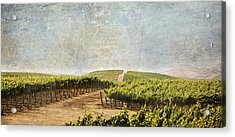 Road To Riches Acrylic Print by Marilyn Hunt