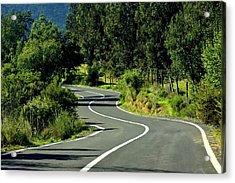Road To Tapijue Acrylic Print by Fernando Lopez Lago