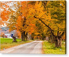 Road To The Farm Acrylic Print by Tim Kirchoff