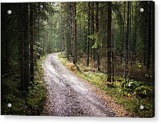 Road To The Light Acrylic Print