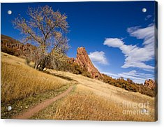 Road To The Rocky Blue Acrylic Print by Andrew Serff